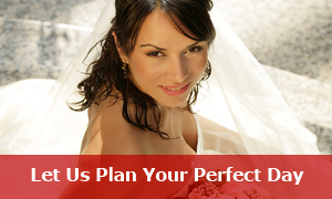 Plan Your Wedding With Us